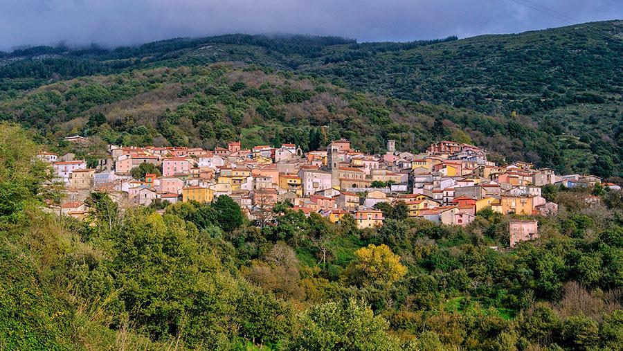 """Contagi in calo in Sardegna? Ad Aritzo ci sono 50 positivi e 102 in quarantena. Monni: """"rispettiamo le norme anti Covid"""""""