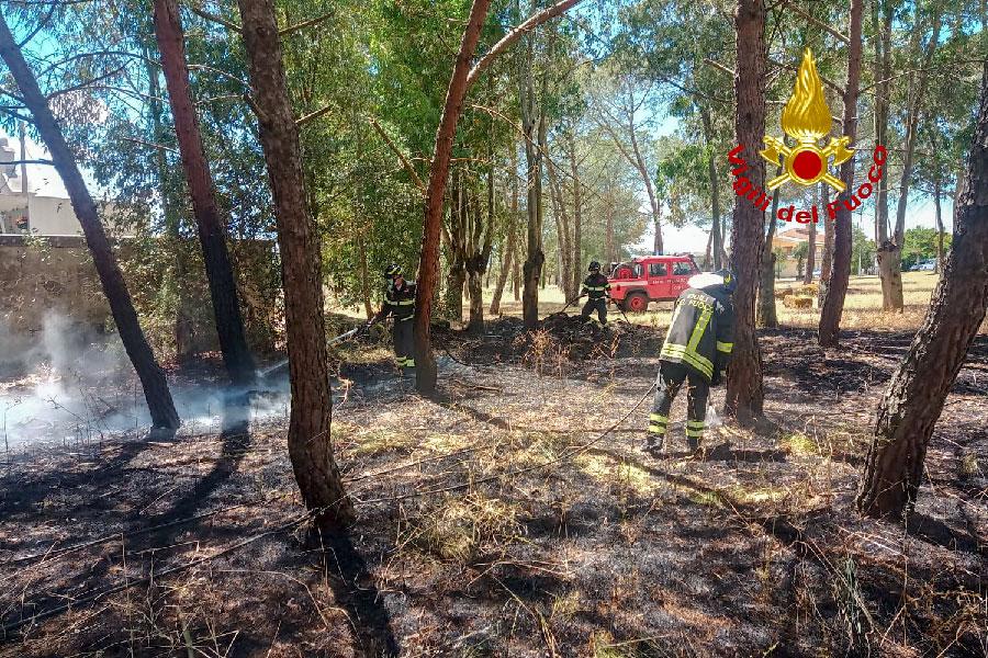 Paura a Sedilo: le fiamme lambiscono il cimitero