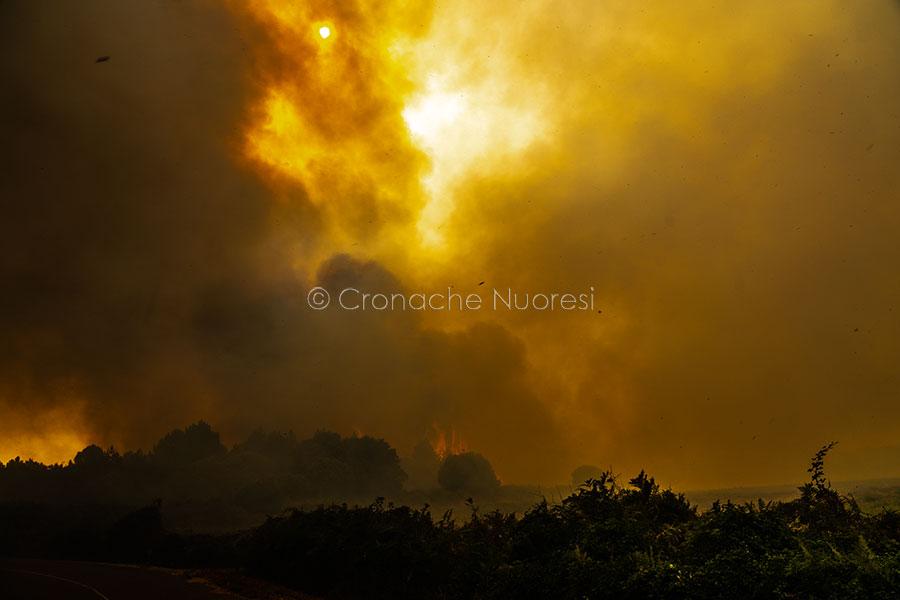 Dopo le devastazioni degli incendi, il Montiferru escluso dal piano di potenziamento del Corpo Forestale