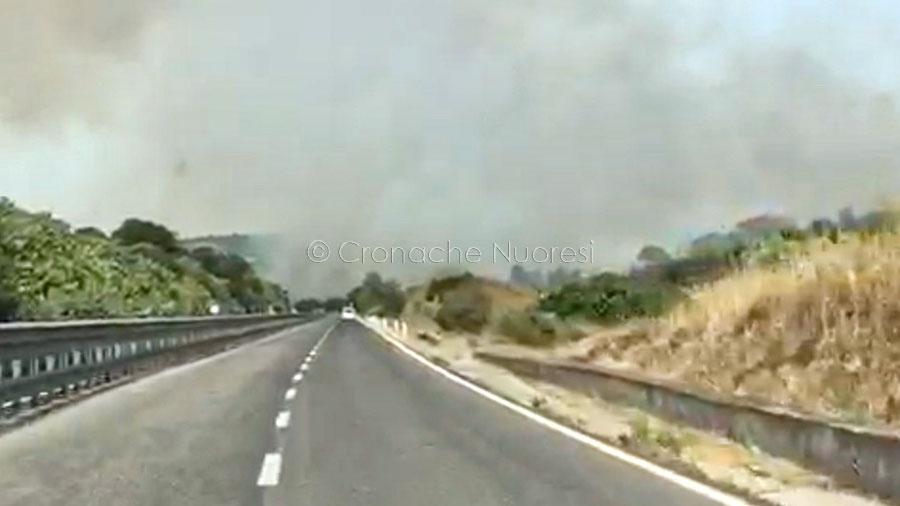 Le immagini dell'incendio a Ghilarza. La nube di fumo arriva fino a Nuoro – IL VIDEO