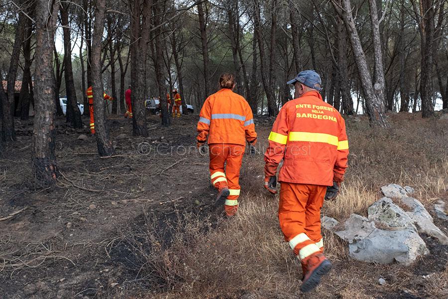La Regione accelera le procedure per garantire alle popolazioni colpite dai roghi un rapido ristoro dei danni