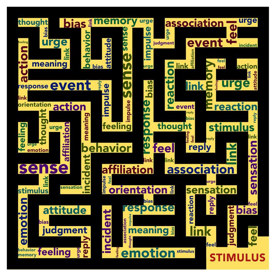 Autismo, abilismo e ddl Zan: tanti i luoghi comuni da sfatare