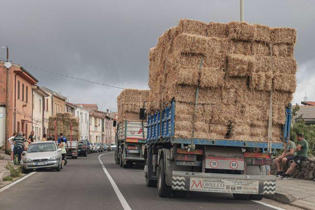 Coda di camion carichi di foraggio a Tresnuraghes (foto S.Novellu)